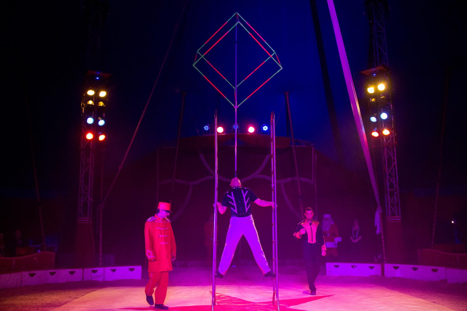 Circus Humberto Preise